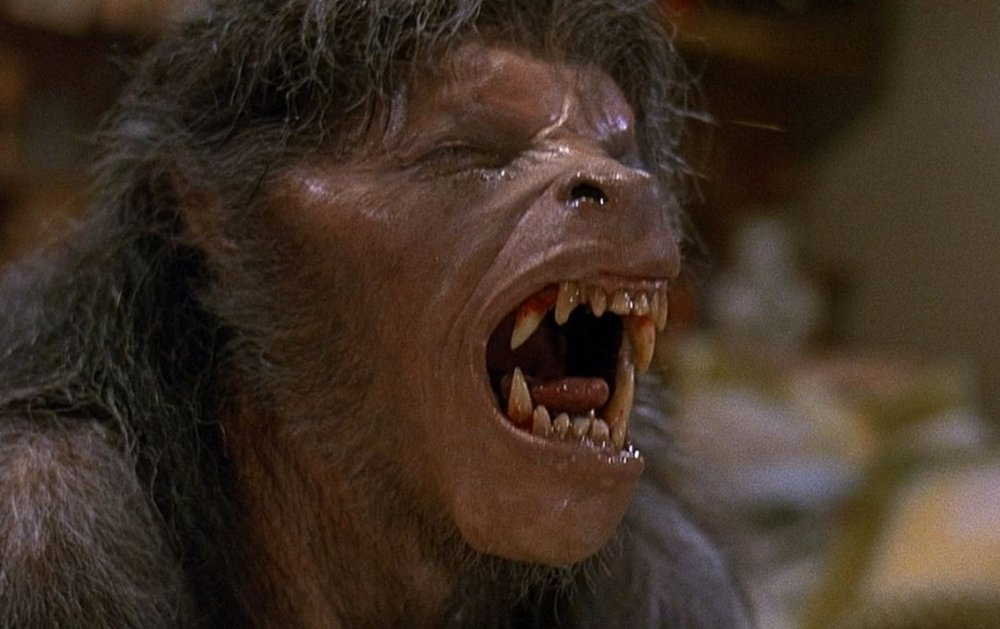 american-werewolf-in-london-an-1981-004-wolf-groan